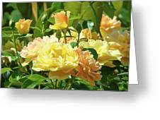 Roses Art Prints Rose Garden Flowers Giclee Prints Baslee Troutman Greeting Card