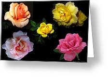 Roses Beautiful Greeting Card