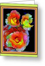 Roses For Anne Catus 1 No. 3 V B With Decorative Ornate Printed Frame. Greeting Card