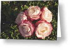 Roses In A Vase,on The Grass Greeting Card