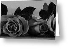 Roses In Bed Greeting Card
