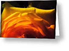 Roses In Moonlight 11 Greeting Card