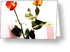 Roses In The Light Greeting Card