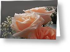 Roses Light Greeting Card