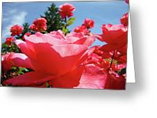 Roses Pink Rose Landscape Summer Blue Sky Art Prints Baslee Troutman Greeting Card