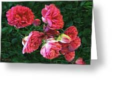 Roses Roses Greeting Card
