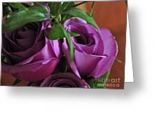 Roses Up Close Greeting Card