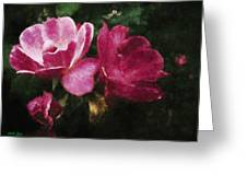 Roses With Texture Greeting Card