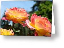 Roses Yellow Roses Pink Summer Roses 4 Blue Sky Landscape Baslee Troutman Greeting Card