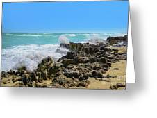 Ross Witham Beach Hutchinson Island Florida Greeting Card