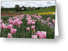 Rosy Field Greeting Card
