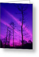 Rosy Fingers Of Dawn Greeting Card