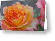Rosy Outlook Greeting Card