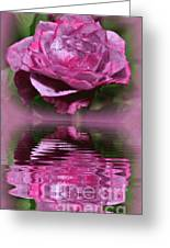 Rosy Reflection Greeting Card