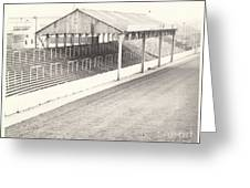 Rotherham - Millmoor - Millmoor Lane Stand 1 - Bw - April 1970 Greeting Card