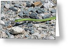 Rough Green Snake Greeting Card