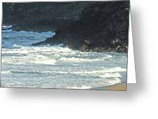 Rough Shores Greeting Card