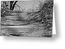 Rough Steps Up The Riverbank Greeting Card