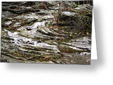Rough Timeworn Rhythm Along The Kaaterskill Creek Greeting Card