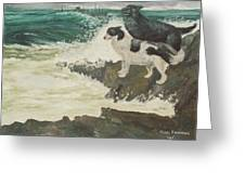 Roughsea Greeting Card