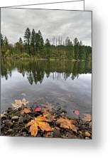 Round Lake At Lacamas Park In Fall Greeting Card