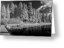 Round Lake State Park 4 Greeting Card