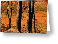 Round Valley State Park 3 Greeting Card