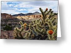 Route 66 Mojave Desert Greeting Card