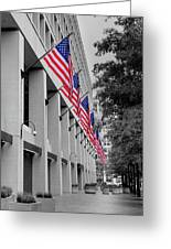 Row Of Flags Greeting Card