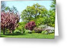 Row Of Flowering Trees Greeting Card
