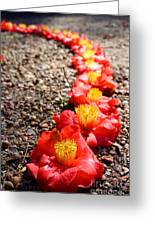 Row Of Flowers Greeting Card