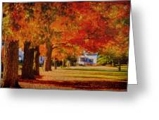 Row Of Maples Greeting Card
