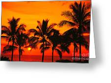 Row Of Palms Greeting Card