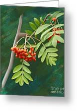 Rowan Tree Greeting Card