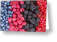 Rows Of  Berries  Greeting Card