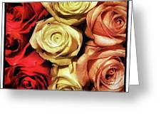 Rows Of Roses. Like Ballerinas Lining Greeting Card by Mr Photojimsf