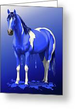 Royal Blue Wet Paint Horse Greeting Card