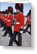 Royal Guards In Ottawa Greeting Card