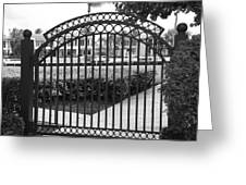 Royal Palm Gate Greeting Card