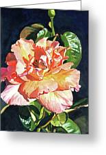 Royal Rose Greeting Card by David Lloyd Glover