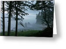 Ruby Beach II Washington State Greeting Card