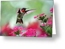 Ruby Garden Jewel Greeting Card