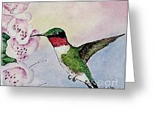 Ruby-throated Hummingbird With Foxgloves Greeting Card