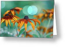 Rudbeckia Greeting Card