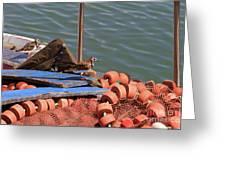 Ruddy Turnstones Perching On Fishing Nets Greeting Card