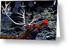 Rudolph With Your Nose So Bright Greeting Card by Keenpress