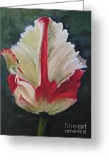 Ruffled Tulip  Greeting Card