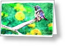 Ruffled Hummingbird - Digital Paint 5 Greeting Card