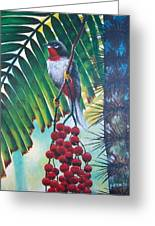 Rufous-throated Solitaire Greeting Card