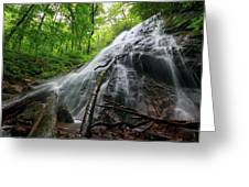 Rufus Morgan Falls Greeting Card